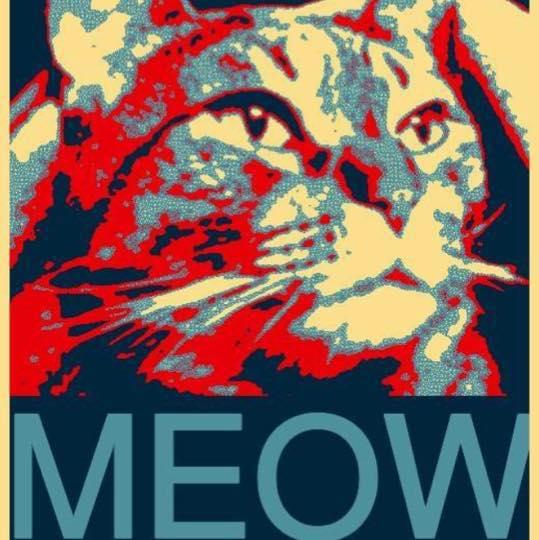 limberbutt mccubbins meow poster