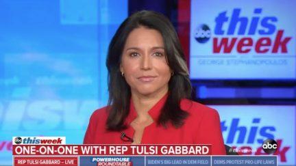 Tulsi Gabbard Fundraising Off 'Fake News' Daily Beast Report