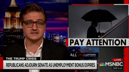 Chris Hayes Roasts GOP Leadership for Adjourning Senate as Unemployment Relief Expires