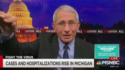 Dr. Anthony Fauci Warns Plateauing at 50,000 Cases a Day Could Lead to Another Covid Surge