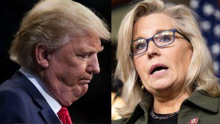 Trump to Endorse Harriet Hageman in Primary Against Liz Cheney: Report