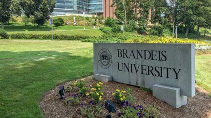 Brandeis