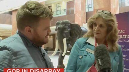 Donie O'Sullivan interviews a woman at CPAC