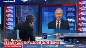 George Stephanopoulos interviews Anthony Fauci